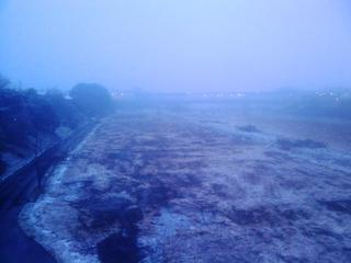 利根川河川敷の雪
